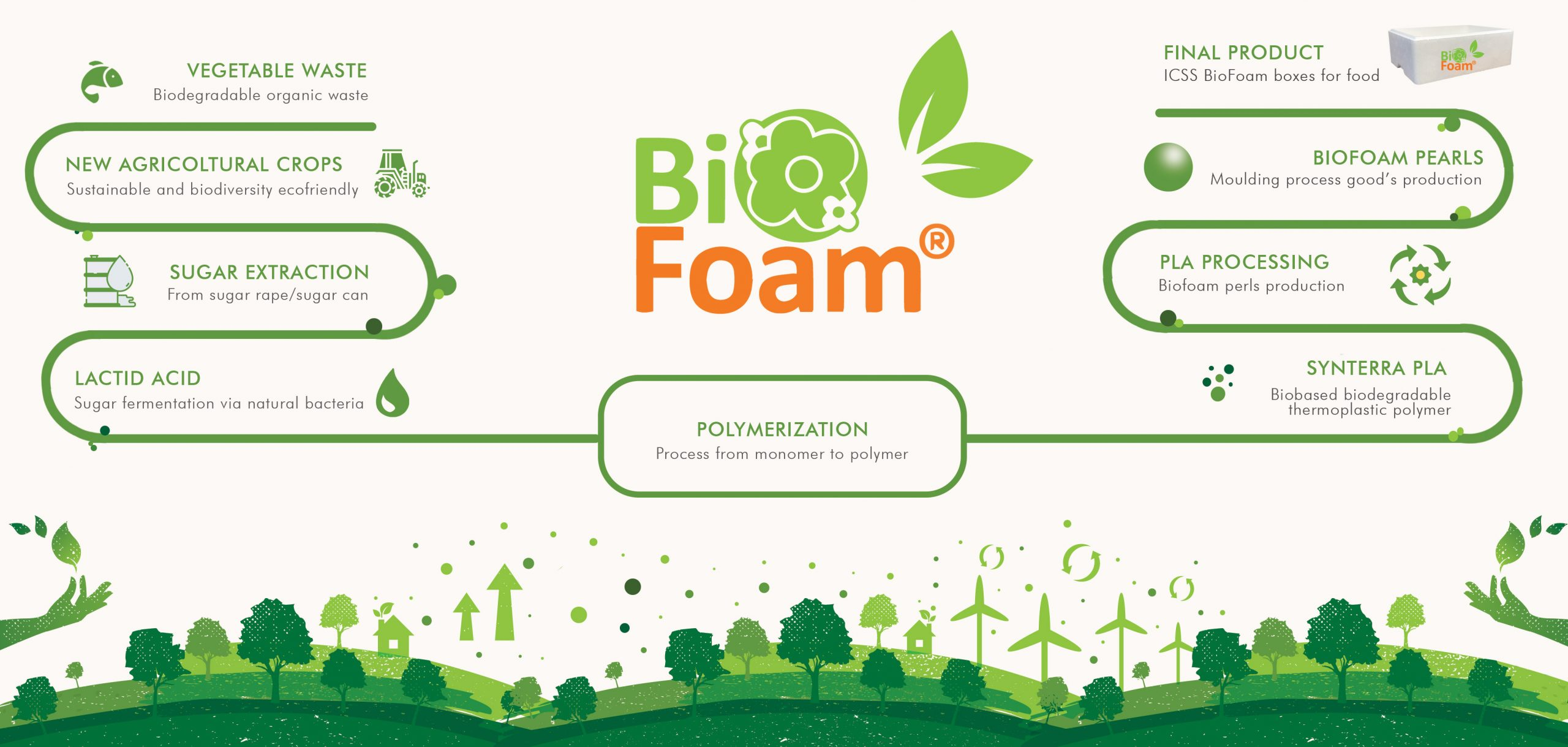Infografica ambiente biofoam icss group