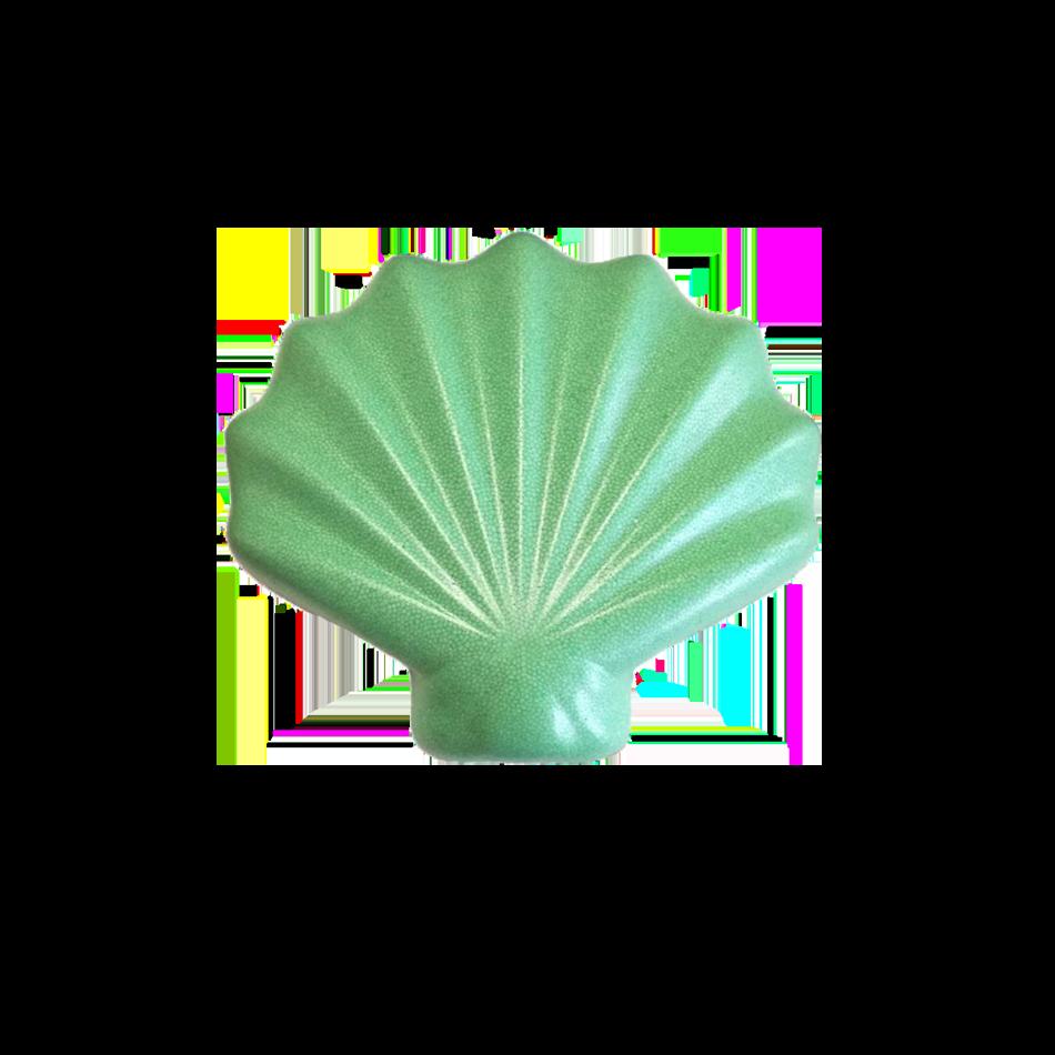 shelly packaging alimentari verde conchiglia